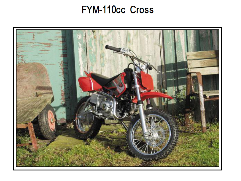 FYM 110CCM Mini Crosser
