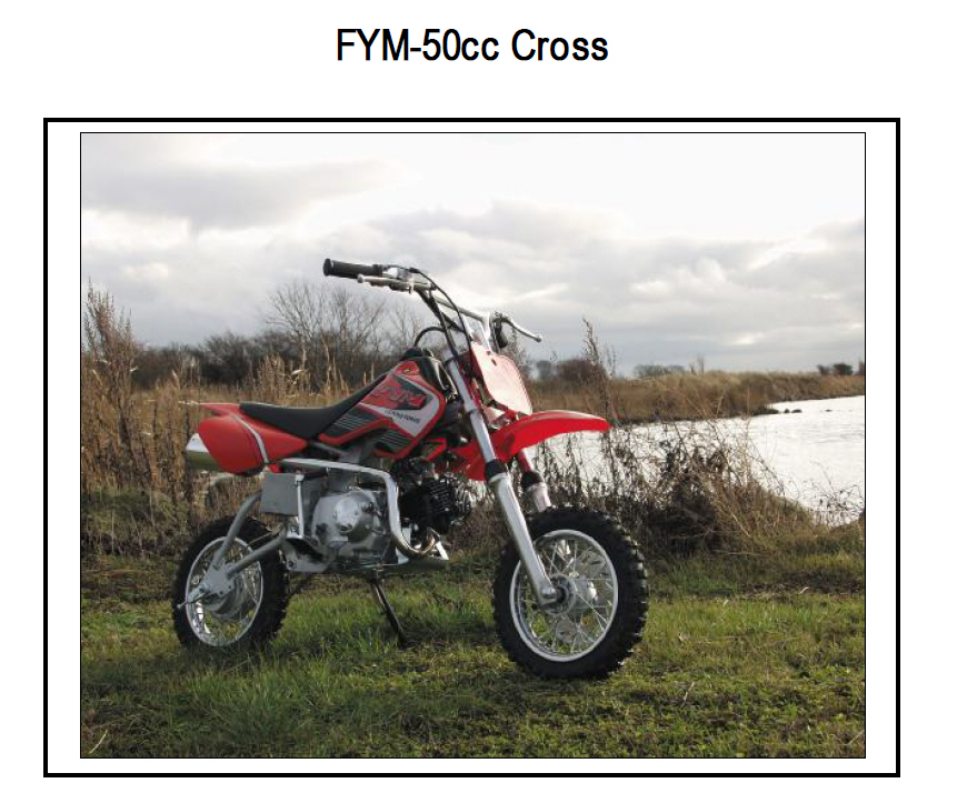 FYM 50CCM Mini Crosser